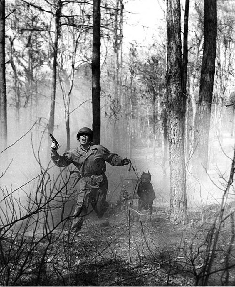Camping Quartermaster: 1942 U.S. Army Launches K-9 Corps